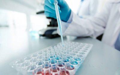 Naučnici Univerziteta Kolumbija napravili srce od matičnih ćelija
